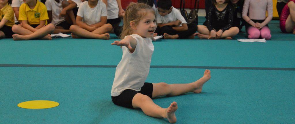 MPEA Gymnastics